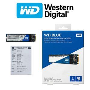 Western Digital Disco SSD 1TB WD Blue 3D NAND, M.2 2280 WDS100T2B0B